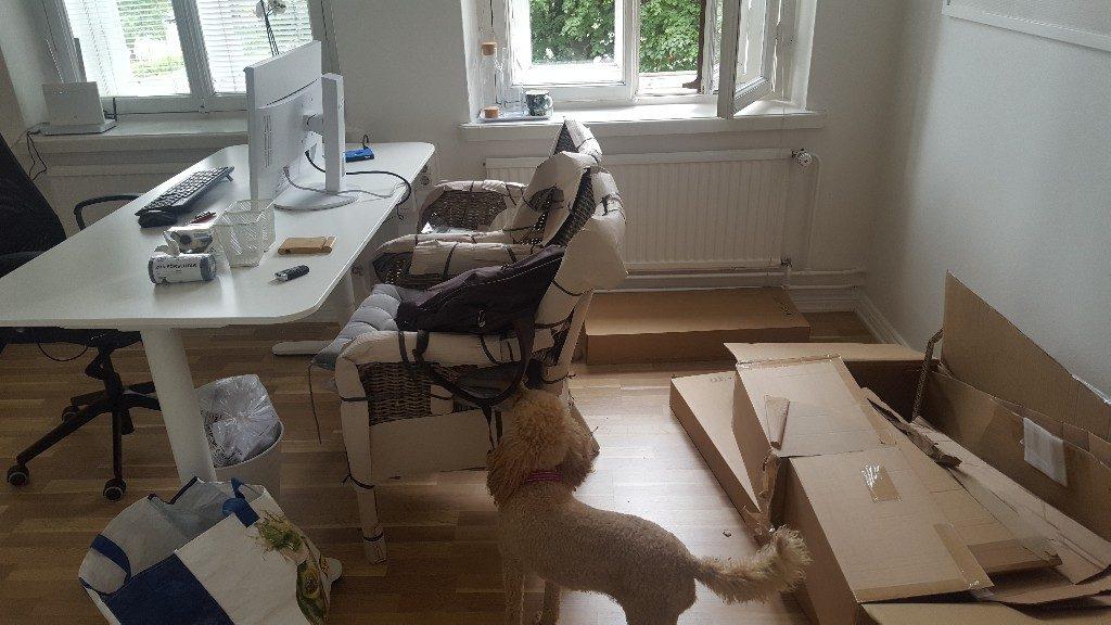 koira kodin tukitiimin toimiston sisustuspuuhissa